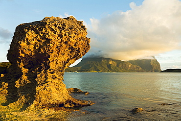 Eroded calcarenite rock (cemented coral sands) with Mount Lidgbird and Mount Gower by the lagoon with the world's most southerly coral reef, on this 10km long volcanic island in the Tasman Sea, Lord Howe Island, UNESCO World Heritage Site, New South Wales, Australia, Pacific Ocean.