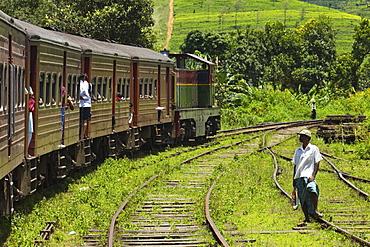 The popular scenic train ride through the tea growing hill country, here between Hatton and Nuwara Eliya, Sri Lanka, Asia