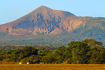 Fields north of Leon and Volcan Telica, one of the country's most active volcanoes, in the North West volcanic chain, Leon, Nicaragua, Central America