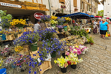 Flower stall in Place Gambetta on popular market day at this south west historic bastide town, Eymet, Bergerac, Dordogne, France, Europe