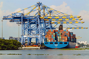 Ship and cranes at Vallarpadam International Transshipment Container Terminal, a major Indian port, Kochi (Cochin), Kerala, India, Asia