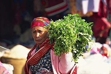 Karo Batak woman at market in Berastagi, Karo Highlands, Sumatra, Indonesia, Southeast Asia, Asia