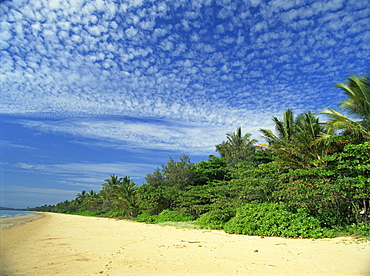 Popular Mission Beach on the northeast coast, east of Tully, Queensland, Australia, Pacific