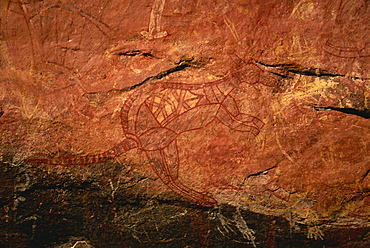 X-ray style painting of a wallaby at the Aboriginal rock art site at Ubirr Rock, Kakadu National Park, where paintings date from 20000 years old to present day, UNESCO World Heritage Site, Northern Territory, Australia, Pacific