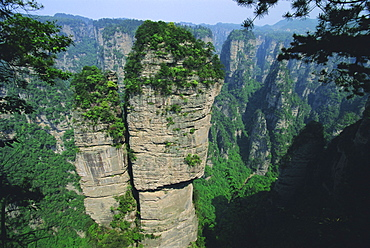 Spectacular limestone outcrops and forested valleys of Zhangjiajie Forest Park in the Wulingyuan Scenic Area, Hunan Province, China