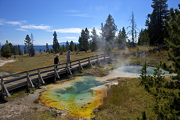 Tourists looking at Seismograph and Bluebell pools, West Thumb Geyser Basin, Yellowstone National Park, UNESCO World Heritage Site, Wyoming, United States of America, North America