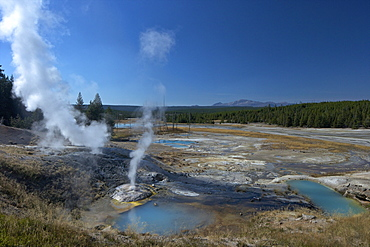 Fumaroles (steam vents) in Porcelain Basin, Norris Geyser Basin, Yellowstone National Park, UNESCO World Heritage Site, Wyoming, United States of America, North America