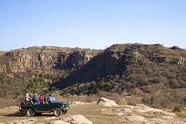Tourists on safari in open jeep, Ranthambore National Park, Rajasthan, India, Asia