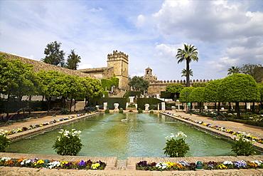 Gardens in Alcazar, Cordoba, Andalucia, Spain, Europe