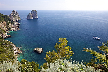 View of Faraglioni Rocks from Gardens of Augustus on Isle of Capri, Bay of Naples, Campania, Italy, Europe