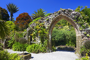 Old stone archway from the ruined abbey in the sub-tropical Abbey Gardens, Island of Tresco, Isles of Scilly, England, United Kingdom, Europe