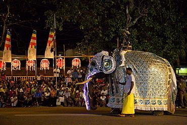 Ceremonial elephant in the Navam Maha Perahera, Colombo, Sri Lanka