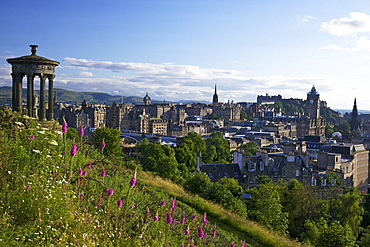 Dugald Stewart Monument and view of Old Town from Calton Hill in summer sunshine, Edinburgh, Scotland, United Kingdom, Europe