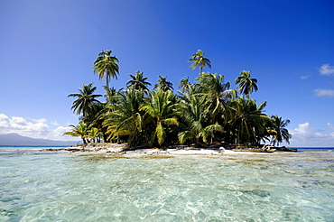 Uninhabited island with palm trees north of the Isla Moron island, San Blas Archipelago, Caribbean Sea, Panama, Central America