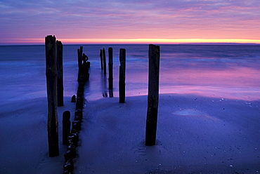 Beach with stakes in Juliusruh at sunrise and view on the Tromper Wiek bay, Baltic Sea, Ruegen island, Mecklenburg-Western Pomerania, Germany, Europe