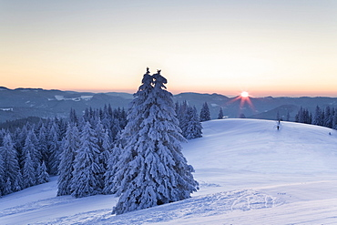 Cross-country skiers at Belchen summit at sunrise, Black Forest, Baden-Wuerttemberg, Germany, Europe