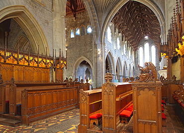 Choir stalls made of oak, St. Cainnech Cathedral or St. Canice's Cathedral, Kilkenny, County Kilkenny, Ireland, British Isles, Europe