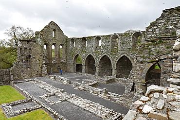 Monastery ruins, Jerpoint Abbey, County Kilkenny, Republic of Ireland, British Isles, Europe