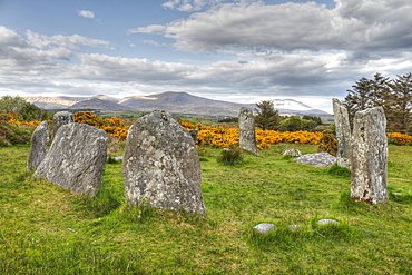 Derreenataggart stone circle, Megaliths, Castletownbere, Beara Peninsula, Cork, Republic of Ireland, British Isles, Europe