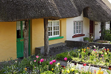 Houses with thatched roof, Adare, County Limerick, Ireland, British Isles, Europe