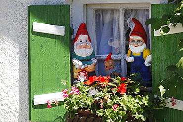 Garden gnomes in a window, Wessling, Fuenfseenland or Five Lakes region, Upper Bavaria, Bavaria, Germany, Europe