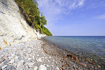 Gravel beach and chalk cliffs on the Baltic Sea, Nationalpark Jasmund national park, Ruegen Baltic Sea island, Mecklenburg-Western Pomerania, Germany Europe