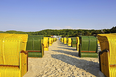 Lined up beach chairs on the sandy beach of the Baltic resort Binz on Ruegen island, Mecklenburg-Western Pomerania, Germany, Europe
