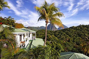 Bungalows, palms, view on the Pitons mountains and the rain forest, Luxury Hotel Anse Chastanet Resort, LCA, St. Lucia, Saint Lucia, Island Windward Islands, Lesser Antilles, Caribbean, Caribbean Sea