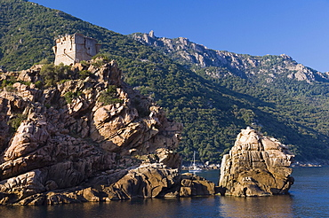 Genoese watchtower, rocky coast of Porto, Gulf of Porto, Corsica, France, Europe
