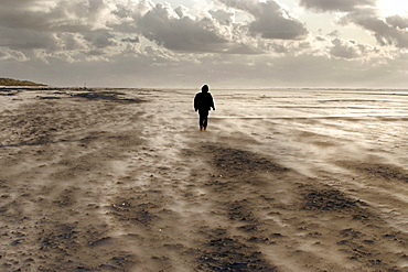 Lone figure of a person on a windy beach, island of Juist, Lower Saxony, North Germany, Europe