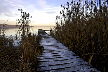 Ice on old wooden jetty, lake Chiemsee, Upper Bavaria, Germany, Europe