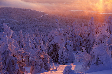 Mt. Brocken in winter at sunset, Harz mountains, Saxony-Anhalt, Germany, Europe