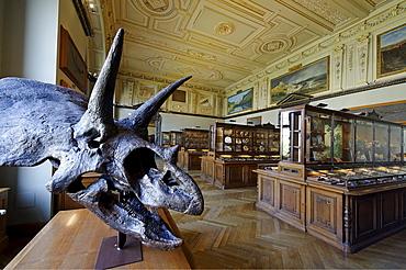 Museum of Natural History, Maria Theresienplatz square, 1st district, Vienna, Austria, Europe
