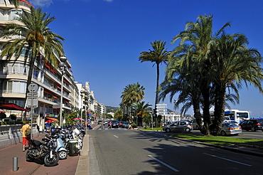 Promenade des Anglais, Nice, Nizza, Cote d'Azur, Departement Alpes Maritimes, Provence-Alpes-Cote díAzur, France, Europe