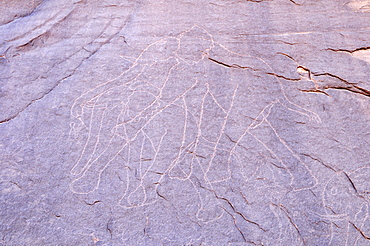Neolithic rock art, elephant engraving, of the Tadrart, Tassili n'Ajjer National Park, Unesco World Heritage Site, Algeria, Sahara, North Africa