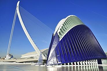 Modern bridge designed by Spanish architect Santiago Calatrava in Ciudad de las Artes y las Ciencias, City of Arts and Sciences, Valencia, Comunidad Valenciana, Spain, Europe