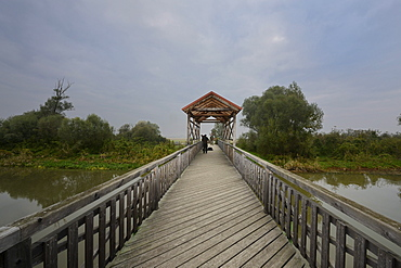 Escape route across the Bruecke von Andau bridge, used after the Hungarian uprising, reconstruction, the original bridge was blown up in 1956, Burgenland region, Austria, Europe