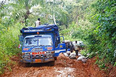 Truck stuck in the mud, jungle trail, Bamenda, Cameroon, Africa