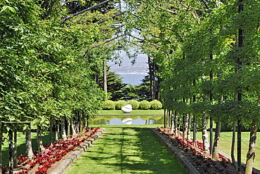 Pergola with fruit trees, view on Dunedin in the back, Larnach Castle, Otago Peninsula, Dunedin, South Island, New Zealand