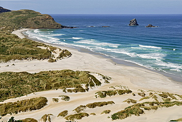 Sandfly Bay Wildlife Refuge, Otago Peninsula, Dunedin, South Island, New Zealand