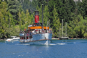 Historic steamship Tss Earnslaw, 1912, arriving in the port of Queenstown, South Island, New Zealand