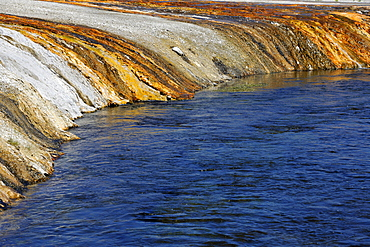 Colored thermophilic bacteria, outlet of the Cliff Geyser, Firehole River, Black Sand Basin, Upper Geyser Basin, Yellowstone National Park, Wyoming, United States of America, USA