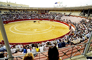 Bullfight in the arena of Sanlucar de Barrameda as seen from the grandstand, Costa de la Luz, Andalusia, Spain, Europe