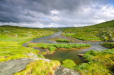 River on a plateau near the Hardangervidda, Norway, Scandinavia, Europe
