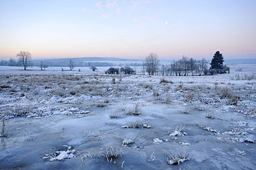 Landscape covered with ice and hoarfrost, southern Harz mountain range, Saxony-Anhalt, Germany, Europe
