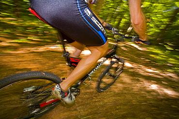 Cyclist, mountain biker riding bike in the woods