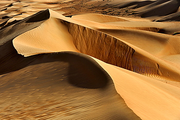 Finely structured dunes in the Wahiba Sands desert in Oman, Middle East