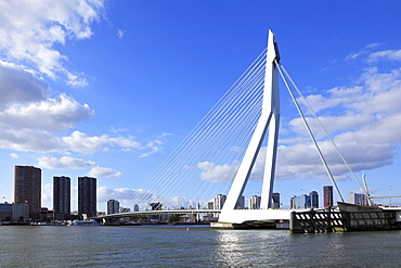 Erasmus Bridge, a cable-stayed bridge, panorama in front of the skyline of Rotterdam, Holland, Netherlands, Europe
