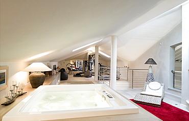 Modern home interior, bath in a living room