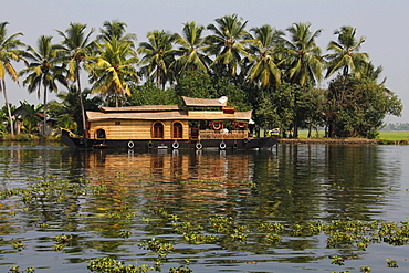 Luxury houseboat on a canal in front of palm trees, Haripad, Alappuzha, Alleppey, Kerala, India, Asia